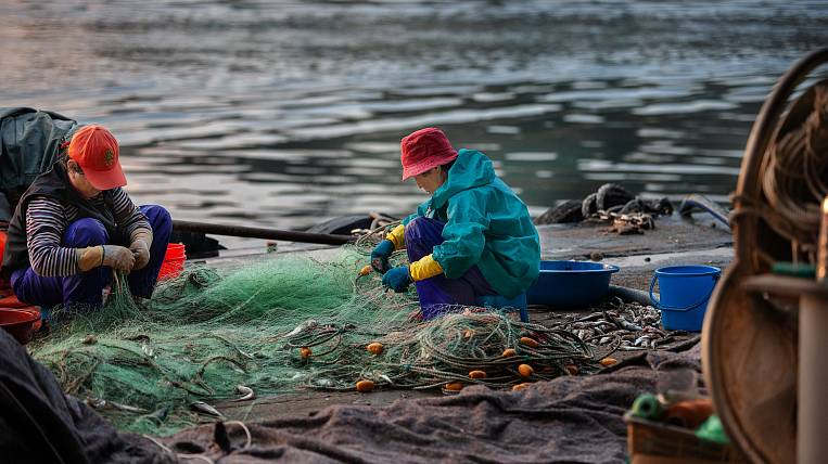 Emergency mode introduced due to Kamchatka fishermen in the Kuril Islands