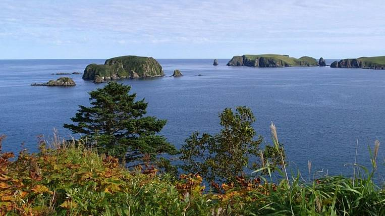 Two projects from Sakhalin take part in the competition for the development of ecotourism
