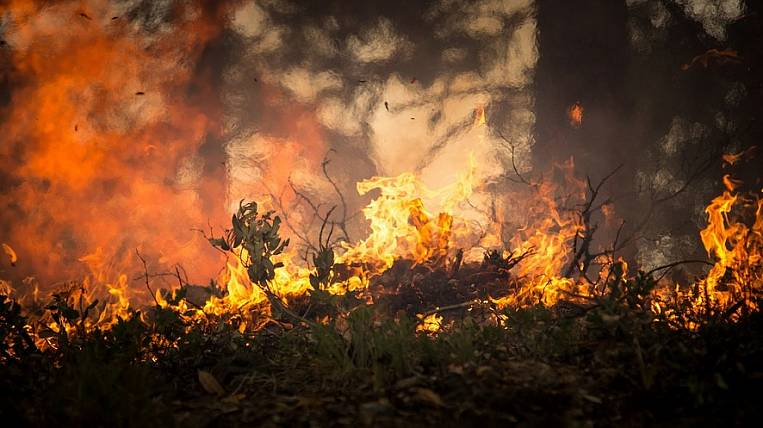 A special fire regime was introduced in Khabarovsk