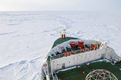 The Northern Sea Route will provide 4 supplies of fish from Kamchatka in 2021