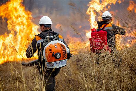 The area of fires in Primorye has grown 10 times per day