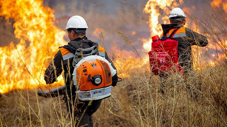 The area of ​​fires in Primorye has grown 10 times per day