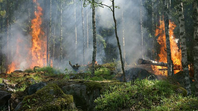 Firefighters extinguish five natural fires in the Amur region