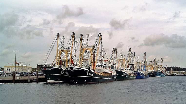 Chukotka will receive 10 billion rubles for the development of the fishing industry