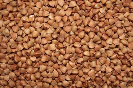 The Ministry of Agriculture proposes to limit the export of buckwheat