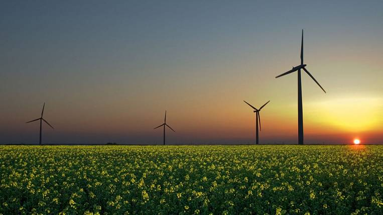 Variants of organization of production of elements of windmills in Primorye are considered by the Japanese corporation