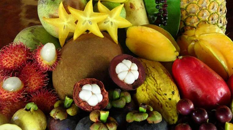 Tropical fruits of Sri Lanka will appear in Russia