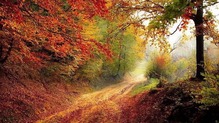 Hydrometeorological Center gave a forecast for October for the Far East