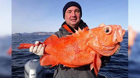 Fish did not choose: Kamchatka deputies were lucky enough to fish
