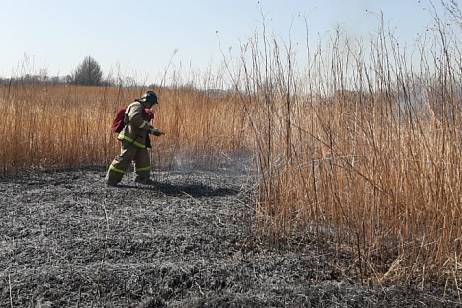 More than 20 fires of dry grass per day happened in the Khabarovsk Territory