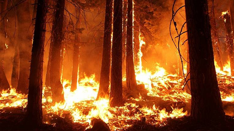 On the territory of all the lands of the forest fund of Primorye, fire regime has been introduced