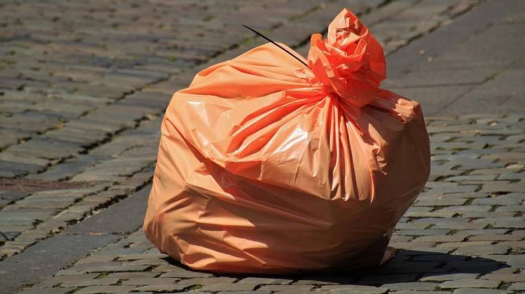 Culprits of garbage collapse fined 5 million rubles in Primorye