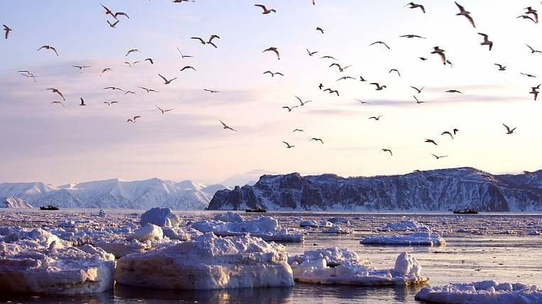 Roman Trotsenko may create a tourism cluster in Kamchatka