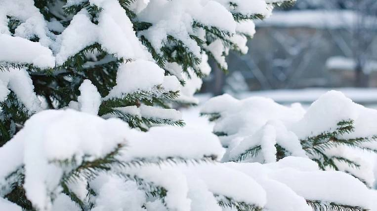 The cyclone will bring snow to the Khabarovsk Territory