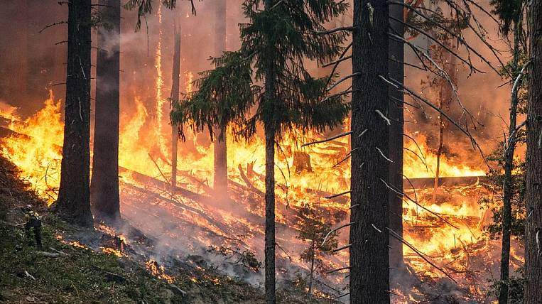 In Yakutia, declared a state of emergency due to forest fires