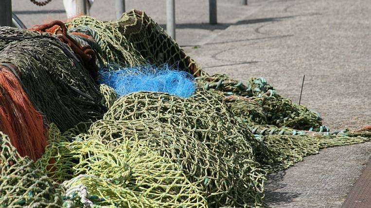 Fishing quotas distributed in Kolyma