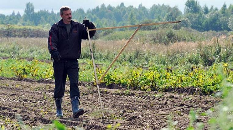 In the Amur region, three applications for