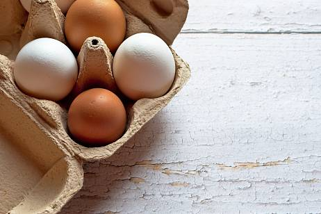 Wholesale prices for eggs fell in Russia
