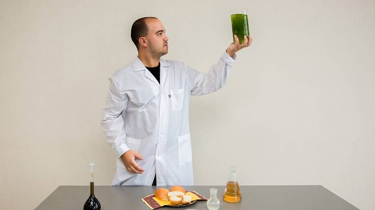 FEFU has developed a new diet product with algae