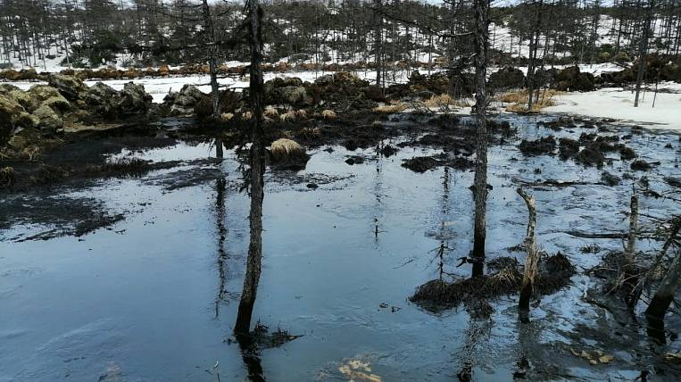 Environmentalists: a dangerous oil spill occurred in the north of Sakhalin
