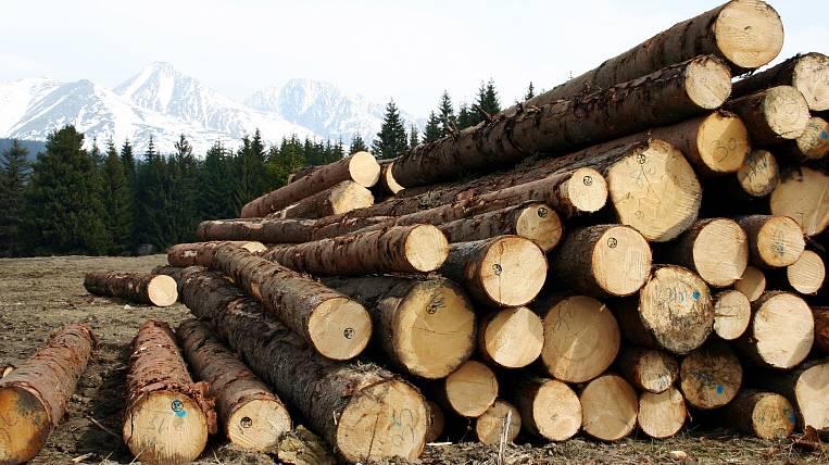 A group of black lumberjacks caught in Angara