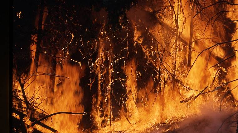 The fire in the reserve was reduced in the Khabarovsk Territory