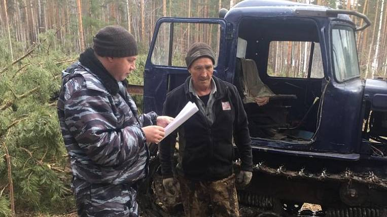 About 40 illegal logging found in two weeks in Priangarye