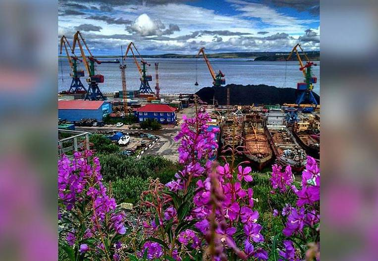 A little Chukchi summer (photo of the day)