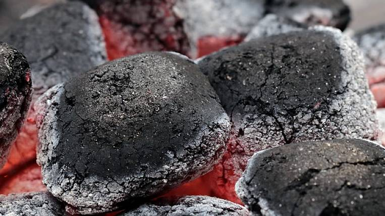 Charcoal began to be produced in the Far Eastern hectare